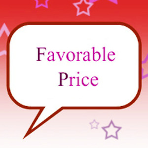 Junior AI Owner limited special sale-(Favorable price)