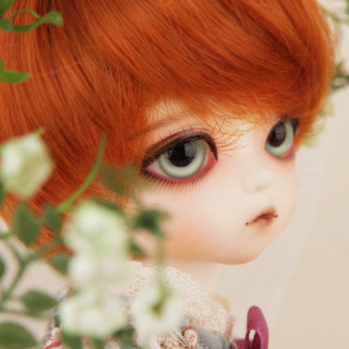 Honey Delf MADELEINE Girl ver.