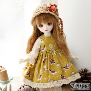 HDF Little bird set (Mustard)