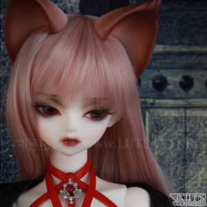 Model Delf ANI Romance ver.- NINE TAILS Limited 耳パーツ贈呈